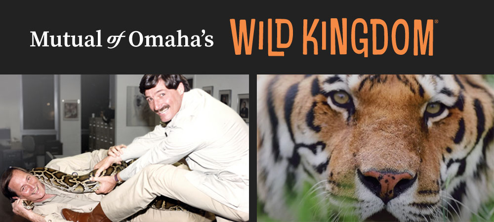 Mutual of Omaha Wild Kingdom image with tiger and boa constrictor